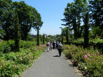 La Seine-Saint-Denis ouvre ses jardins : activités gratuites !