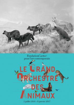 Le Grand Orchestre des animaux, l'expo à la Fondation Cartier