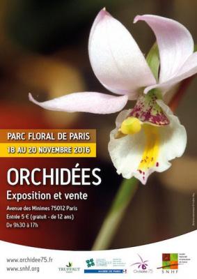 Exposition-vente d'orchidées au parc floral de Paris