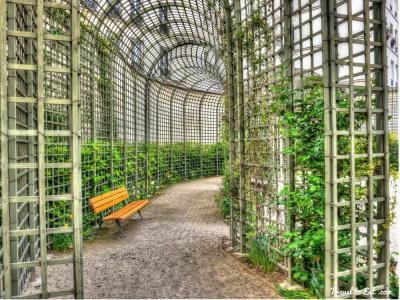 Fête des Jardins au jardin Anne Frank (Paris 3ème)