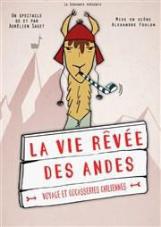 La Vie rêvée des Andes à La Folie Théâtre : notre critique