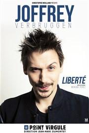 Joffrey Verbruggen au Point Virgule : notre critique