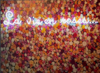 La Vie en Roses, l'exposition gratuite au 9Hotel République