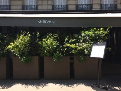 Shirvan, l'adresse métissée de l'Alma