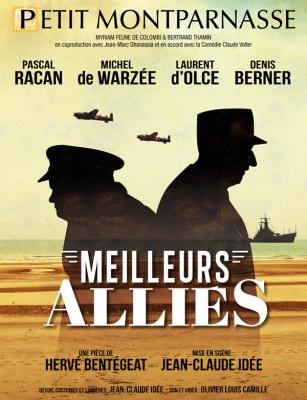 Meilleurs alliés, le spectacle au Petit Montparnasse