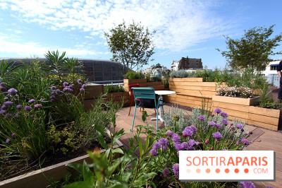Molitor : terrasse rooftop, jardins