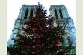 Sapin de Noël sur le parvis de la Cathédrale Notre-Dame de Paris