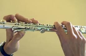 Des cordes et des cuivres et des flûtes