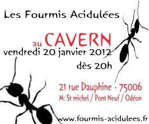concert rock Fourmis Acidulées