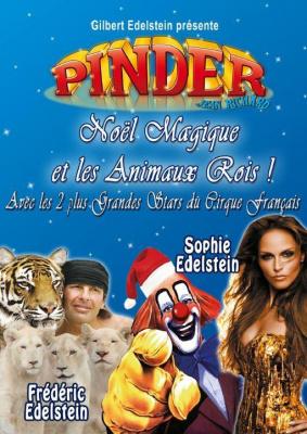 Noël Magique et les Animaux Rois !