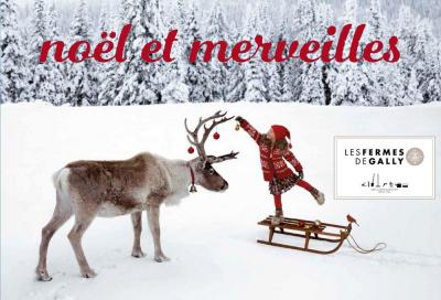 Noël et Merveilles à la Ferme de Gally