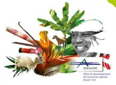 L'Odeadom au Salon International de l'Agriculture 2014