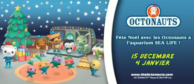 Vacances de Noël à l'Aquarium Sea Life