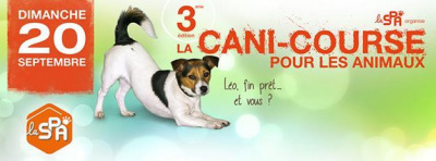 La Cani-Course 2015 de la SPA