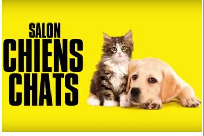 salon chiens chats 2018 le salon pour mieux les choisir