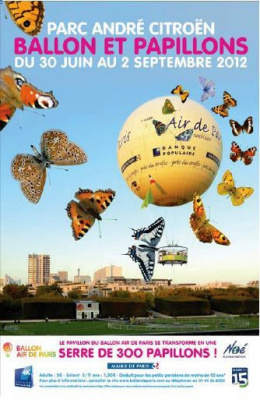Ballon et Papillons