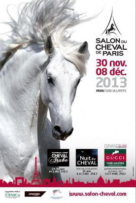 Salon du cheval de paris 2014 for Salon du cheval a paris
