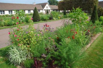 Le jardin de l'école Du Breuil s'ouvre au public