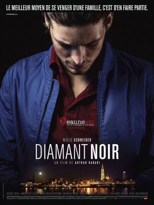 Diamant noir : une pépite avec Niels Schneider