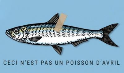 Ceci n 39 est pas un poisson d 39 avril la recyclerie - Poisson d avril images gratuites ...
