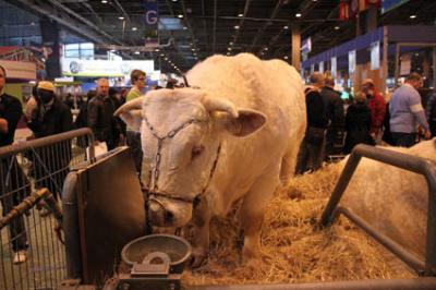 Salon de l'Agriculture 2012