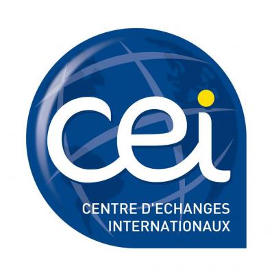 Séance d'essai gratuite de la CEI Academy le 17 septembre !