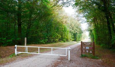 Le Marathon de Chantilly revient en 2017