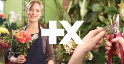L'+xperience : entrez dans les coulisses des artisans et commerçants