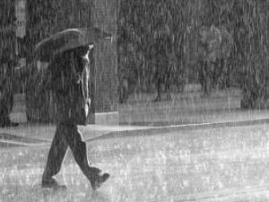 Quelle tenue pour se prot ger de la pluie - Bois noirci par la pluie ...