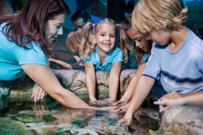 Aquarium Sea life offre 15% de réduction pour ses 15 ans
