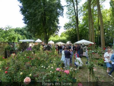 Fleurs en Seine 2016 : les plantes font salon aux Mureaux