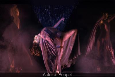 Nuit Blanche : Le Crazy Horse au Petit Palais
