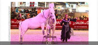 Concours Equi'Star au Salon du Cheval de Paris 2016
