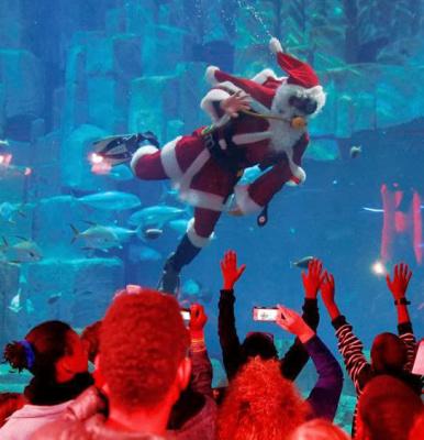 La Magie de Noël s'empare de l'Aquarium de Paris