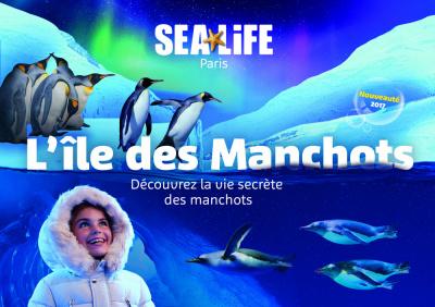 Des Manchots débarquent à Sea Life Paris au Printemps 2017