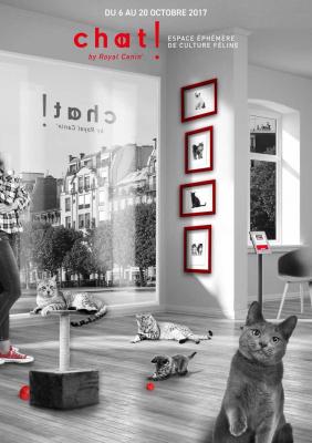 Un pop up store dédié au chat dans le Marais !