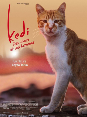 Avant-première de Kedi, des chats et des hommes au Max Linder