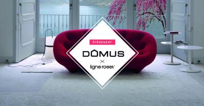 La ligne Roset est à l'honneur chez Domus