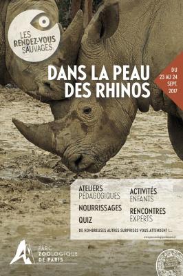 Rendez-vous sauvage au zoo de Vincennes : dans la peau des rhinos