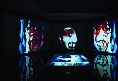 La Rébellion des Morts, la rétrospective Nalini Malani au Centre Pompidou