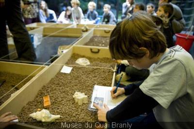 La Fête de la Science 2017 au musée du Quai Branly