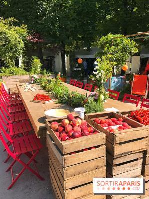 Jardins Jardin 2017 aux Tuileries, les photos