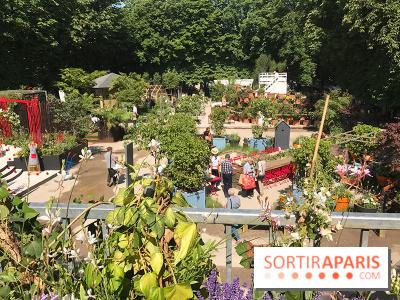Jardins Jardin 2017 aux Tuileries, les photos vue
