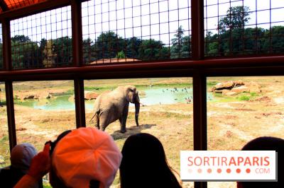 Camion Safari : une visite guidée dans les coulisses de Thoiry