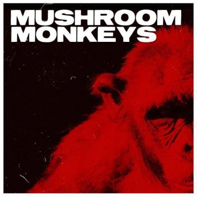 Concert Mushroom Monkeys