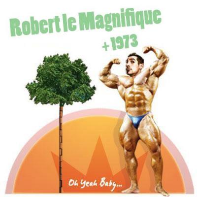 Concert, Paris, Robert le Magnifique, 1973, Divan du Monde