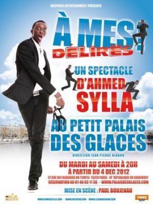 """Ahmed Sylla, """"A mes délires"""""""