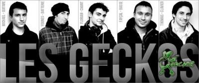 Les Geckos en concert