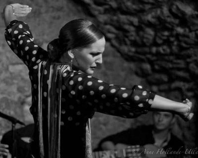 Vuelo Flamenco Cie Carolina Pastor