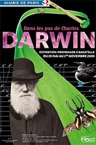 darwin paris